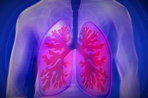 肺癌晚期吃什么食谱哪些食物适合肺癌晚期患者
